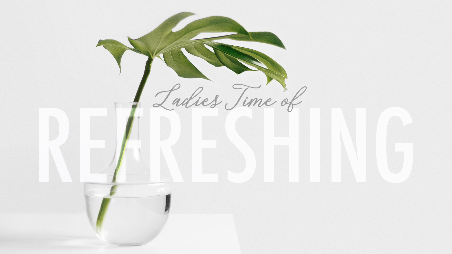 Ladies Time of Refreshing - Banner Photo of Plants